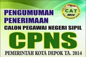 pengumuman-CPNS-2014-595x399